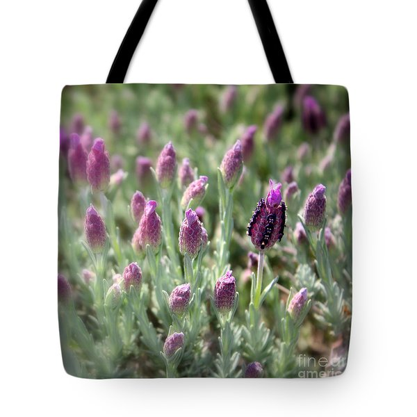 Lavender Standout Tote Bag by Carol Groenen