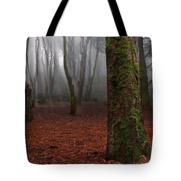 Magic light Tote Bag by Jorge Maia