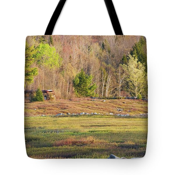 Maine Blueberry Field In Spring Tote Bag by Keith Webber Jr