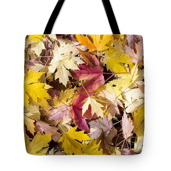 Maple Leaves Tote Bag by Steven Ralser