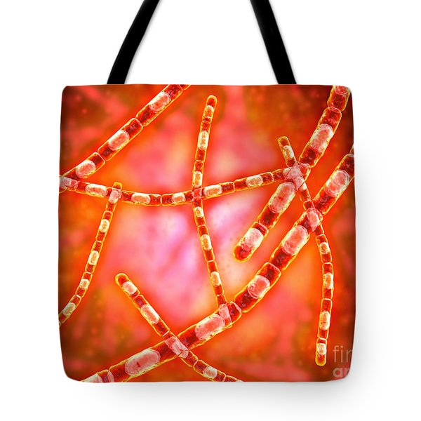 Microscopic View Of Anthrax Tote Bag by Stocktrek Images