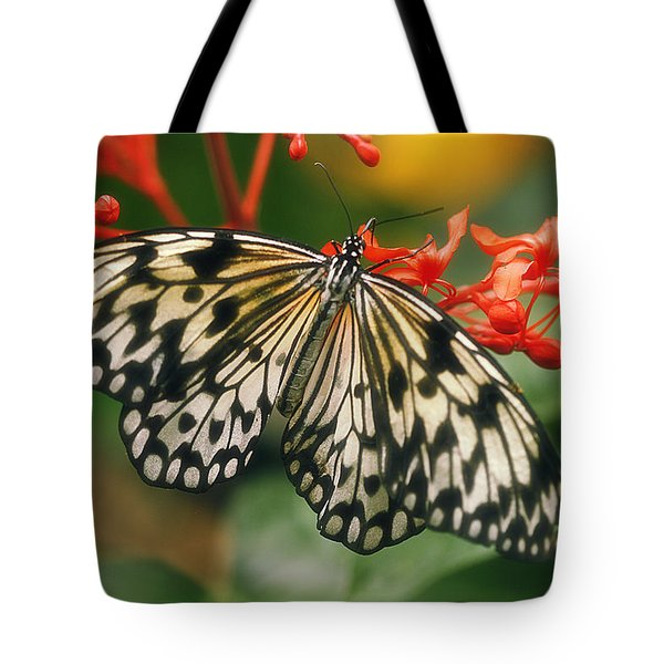 Paper Kite Butterfly Tote Bag by Cindi Ressler