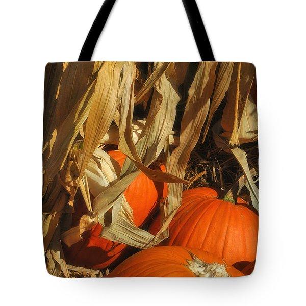 Pumpkin Harvest Tote Bag by Joann Vitali