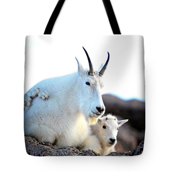 Rocky Mountain Goats 2 Tote Bag by OLenaArt Lena Owens