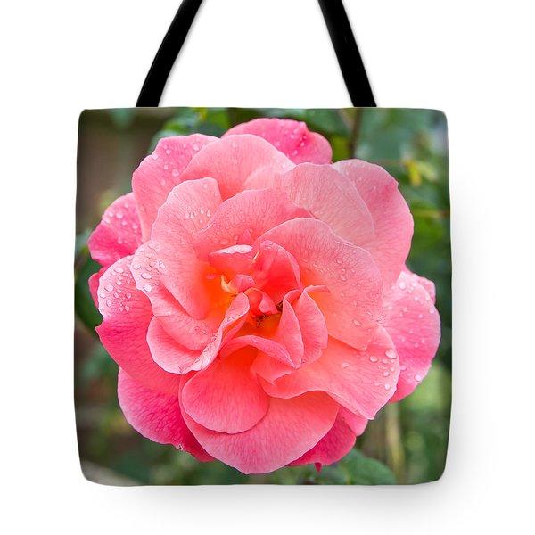 Rose Tote Bag by Tom Gowanlock