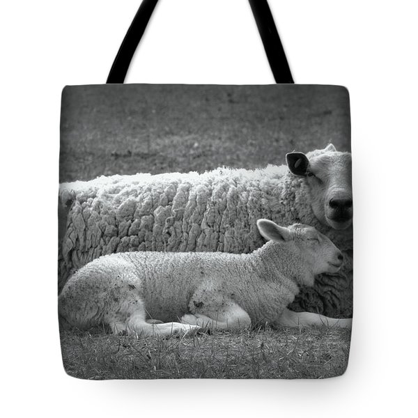 Safe Tote Bag by Kathy Bassett