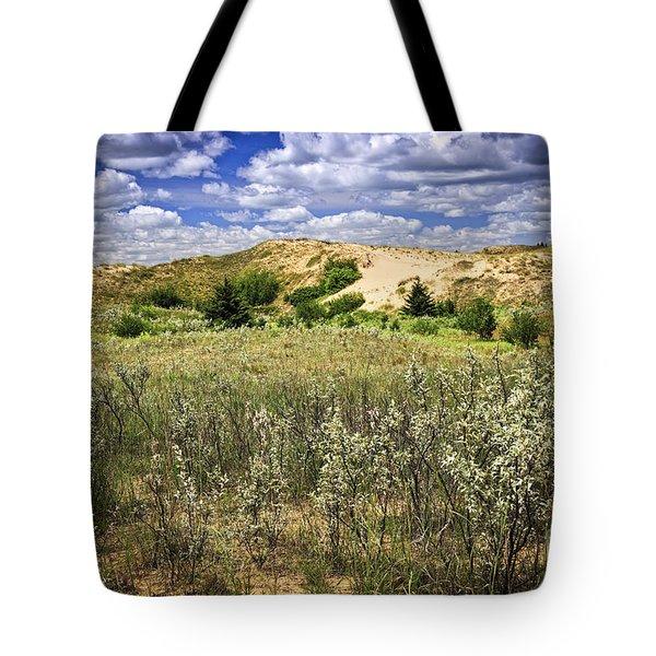 Sand dunes in Manitoba Tote Bag by Elena Elisseeva