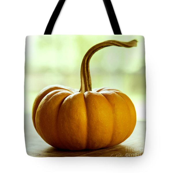 Small Orange Pumpkin Tote Bag by Iris Richardson