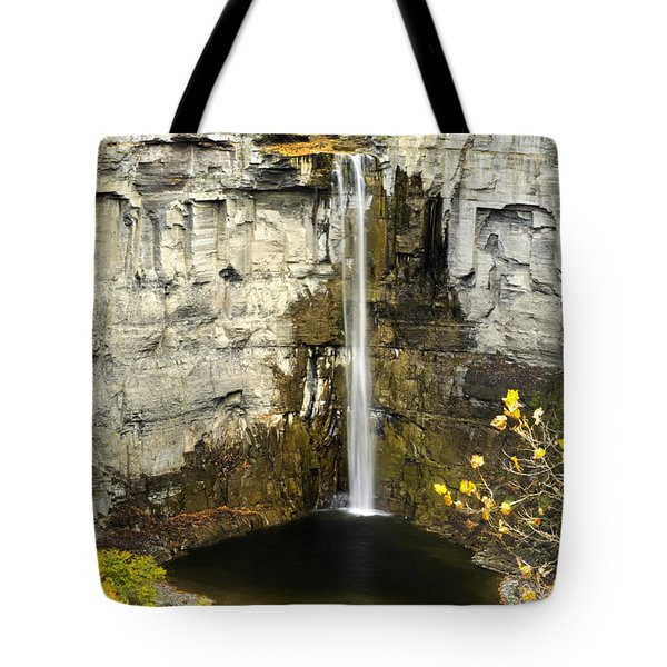 2 Taughannock Falls Tote Bag by Christina Rollo