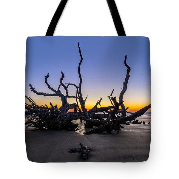 The Reach Tote Bag by Debra and Dave Vanderlaan