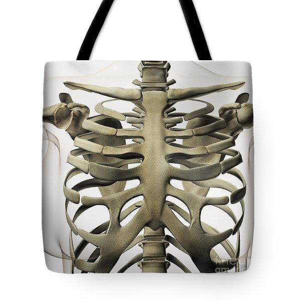 Three Dimensional View Of Female Tote Bag by Stocktrek Images