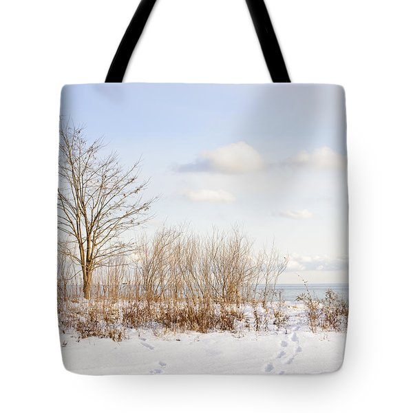 Winter shore of lake Ontario Tote Bag by Elena Elisseeva