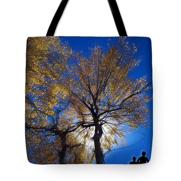 2851 Tote Bag by Peter Holme III