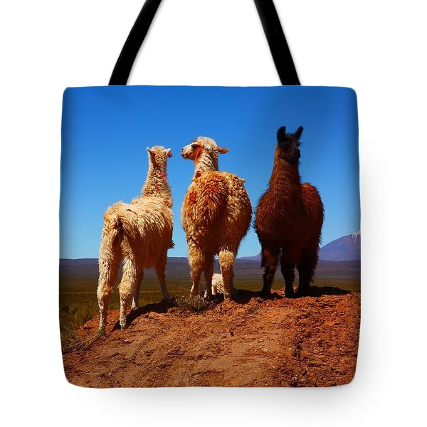 3 Amigos Tote Bag by FireFlux Studios
