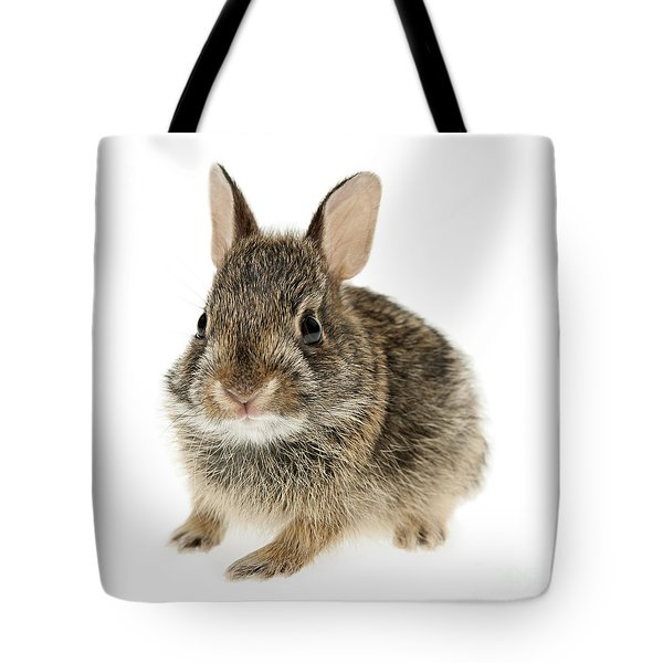 Baby cottontail bunny rabbit Tote Bag by Elena Elisseeva