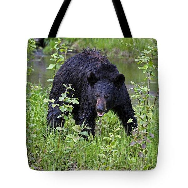 Black Bear Tote Bag by Linda Freshwaters Arndt