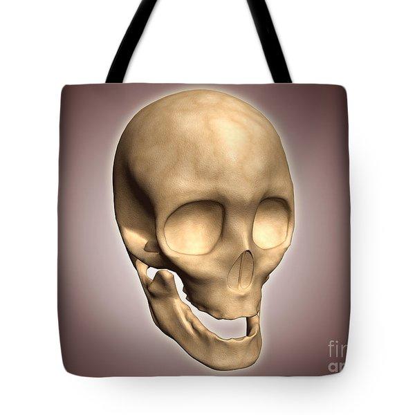 Conceptual Image Of Human Skull Tote Bag by Stocktrek Images