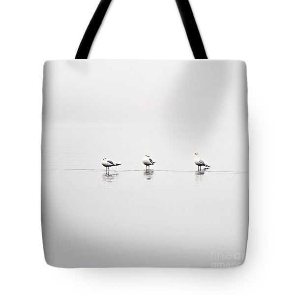 3 Gulls Tote Bag by Sylvia Cook