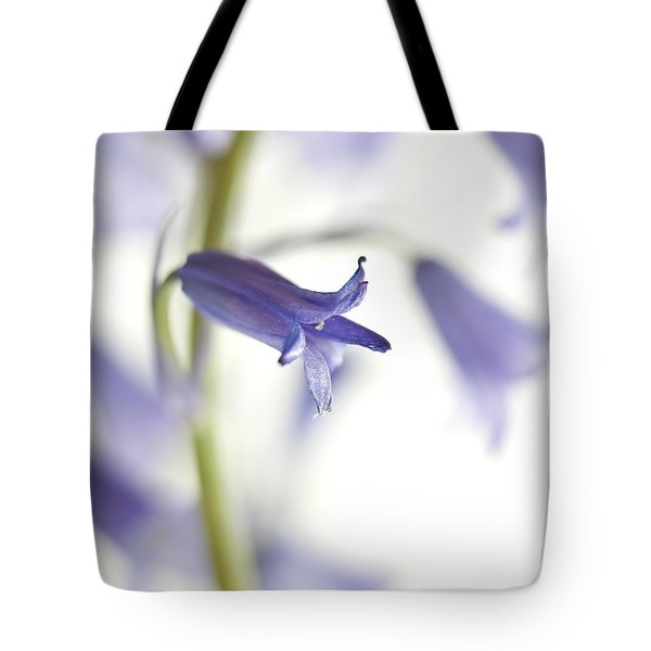 Spring Bluebells Tote Bag by Carol Leigh