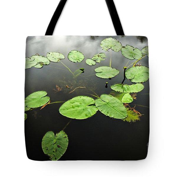 Stillness Tote Bag by Scott Pellegrin