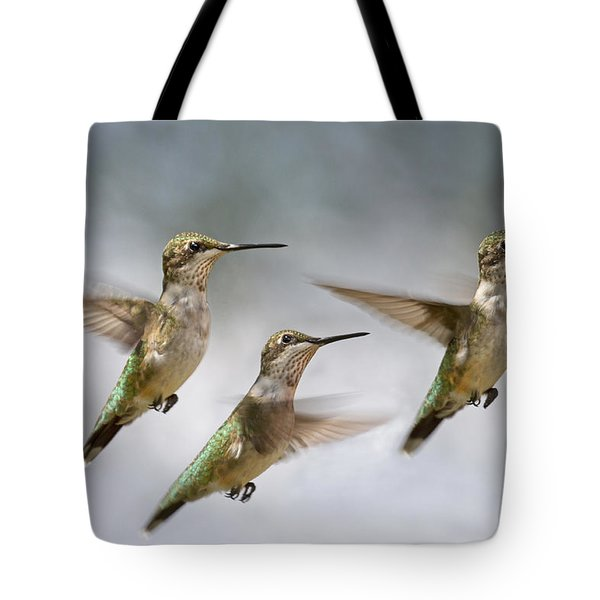Trio Tote Bag by Betsy A  Cutler