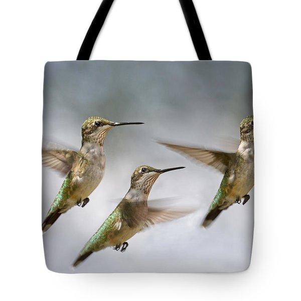 Trio Tote Bag by Betsy C  Knapp