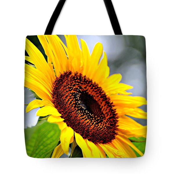 3528 Tote Bag by Marty Koch