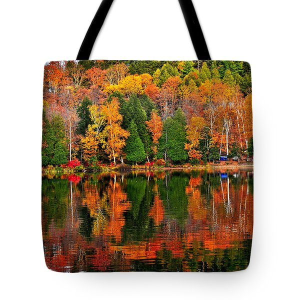 Fall forest reflections Tote Bag by Elena Elisseeva