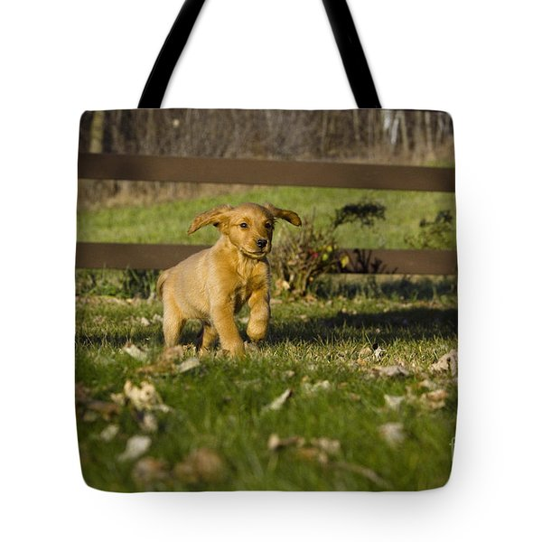 Golden Retriever Pup Tote Bag by Linda Freshwaters Arndt