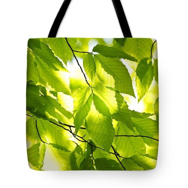 Green Spring Leaves Tote Bag by Elena Elisseeva