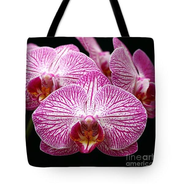 Moth Orchid Tote Bag by James Brunker