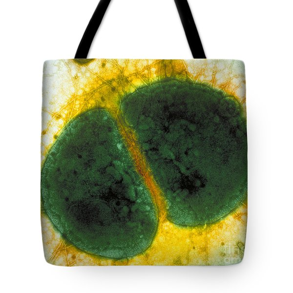 Neisseria Gonorrhoeae Tote Bag by Kwangshin Kim