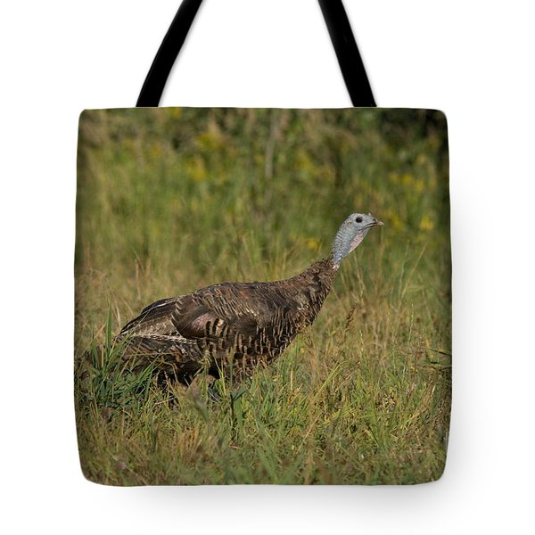Eastern Wild Turkey Tote Bag by Linda Freshwaters Arndt