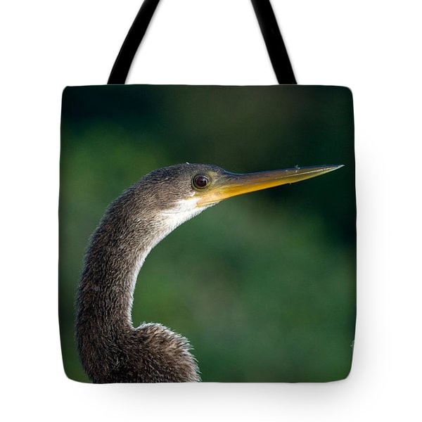 Anhinga Tote Bag by Mark Newman