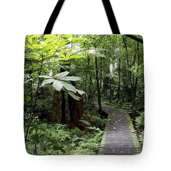 Forest Tote Bag by Les Cunliffe