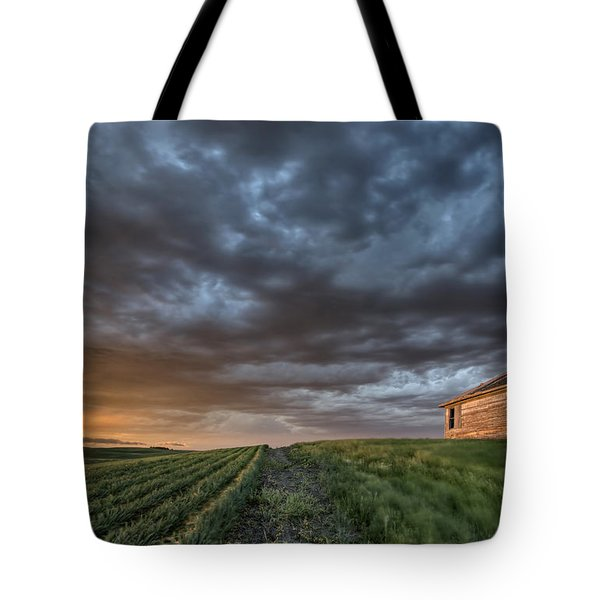 Newly Planted Crop Tote Bag by Mark Duffy