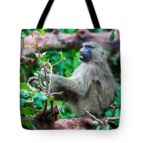 A Baboon In African Bush Tote Bag by Michal Bednarek