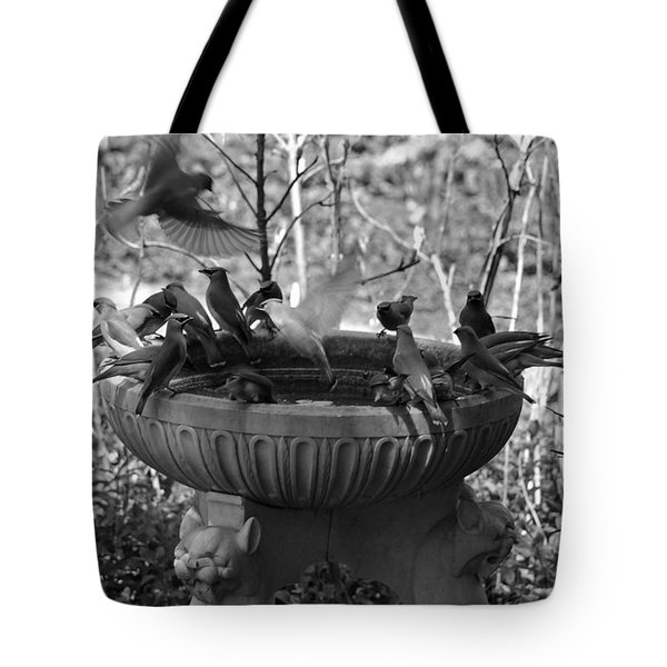 A Bevy Of Birds In Black And White Tote Bag by Suzanne Gaff