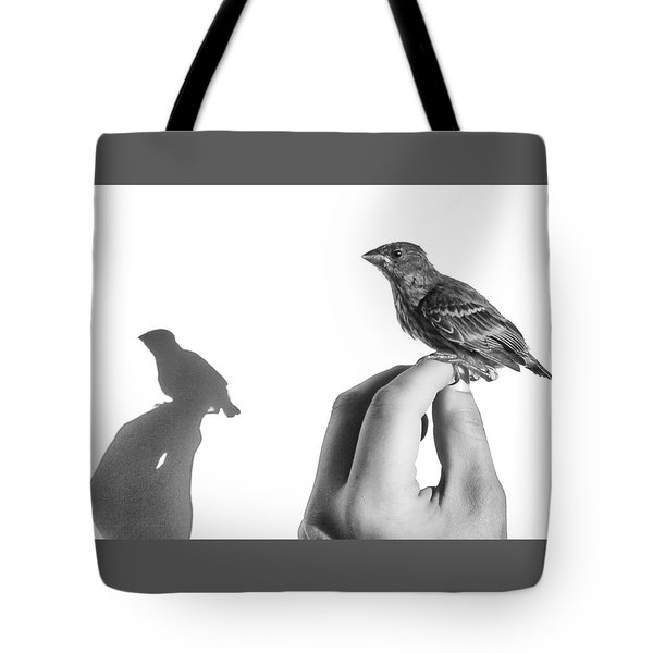 A Bird On The Hand Tote Bag by Caitlyn  Grasso