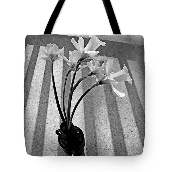 A Brief Moment Tote Bag by Chris Berry