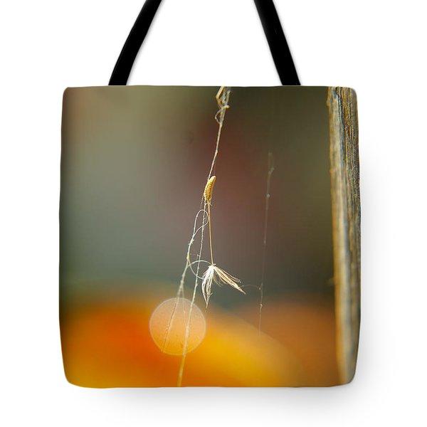 A Captured Dandelion Seed Tote Bag by Jeff Swan