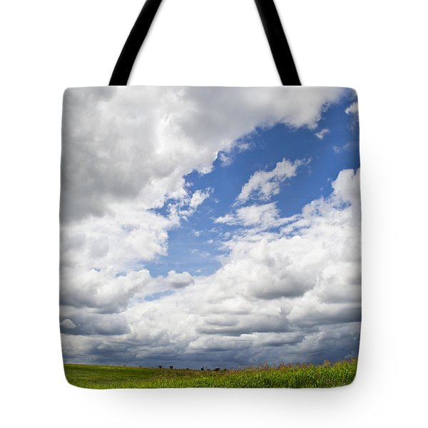 A Cloudy Day Tote Bag by Lisa Plymell