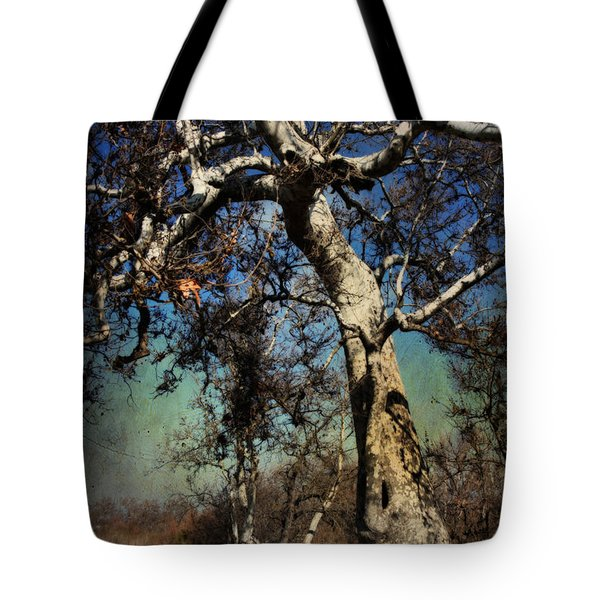 A Day Like This Tote Bag by Laurie Search