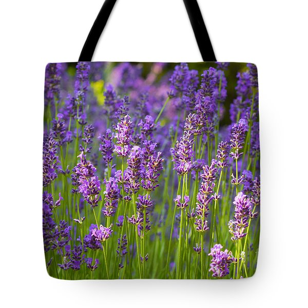 A Friendly Summer Day Tote Bag by Juergen Klust