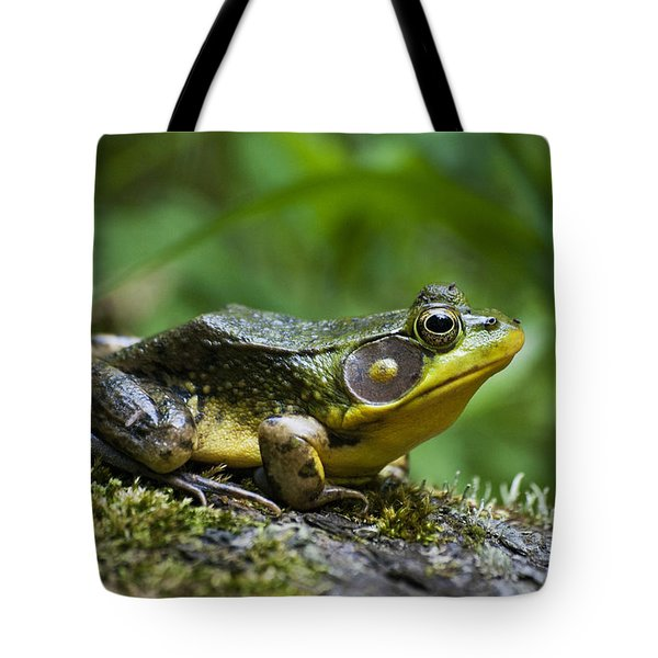 A Frog Is Forever Tote Bag by Christina Rollo