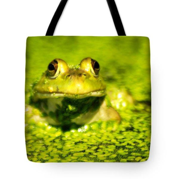 A Frogs Day Tote Bag by Optical Playground By MP Ray