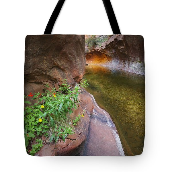 A Frogs Rest Tote Bag by Peter Coskun