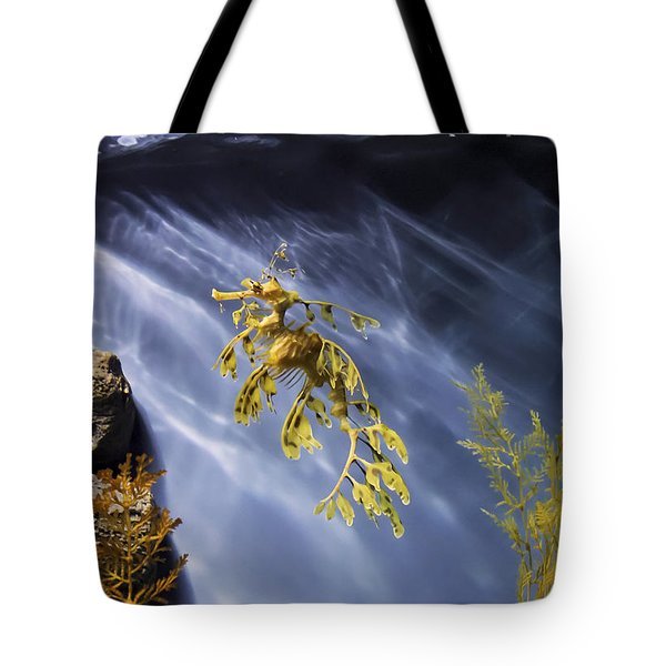 A Funny Seahorse--leafy Seadragon Tote Bag by Angela A Stanton
