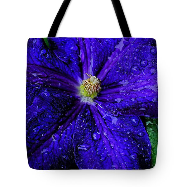 A Gentle Rain Tote Bag by Frozen in Time Fine Art Photography