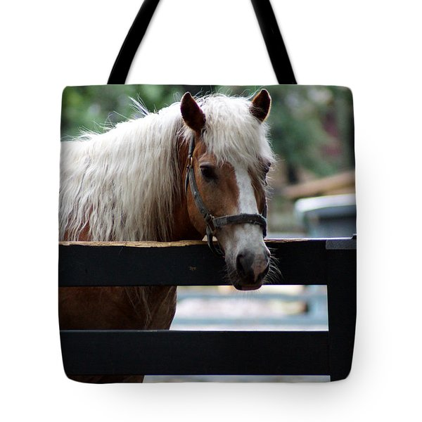 A Hilton Head Island Horse Tote Bag by Kim Pate